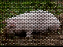 Pig mosaic with Bercontile