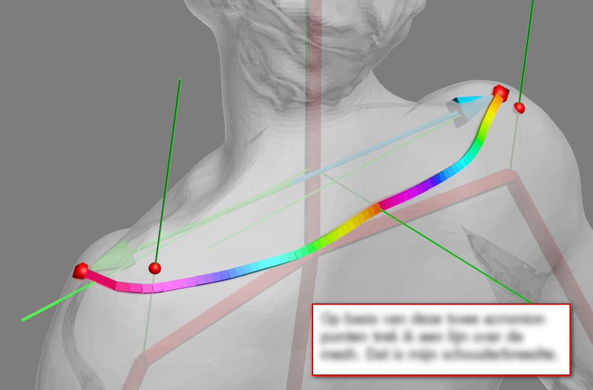 An attempt to measure shoulder width